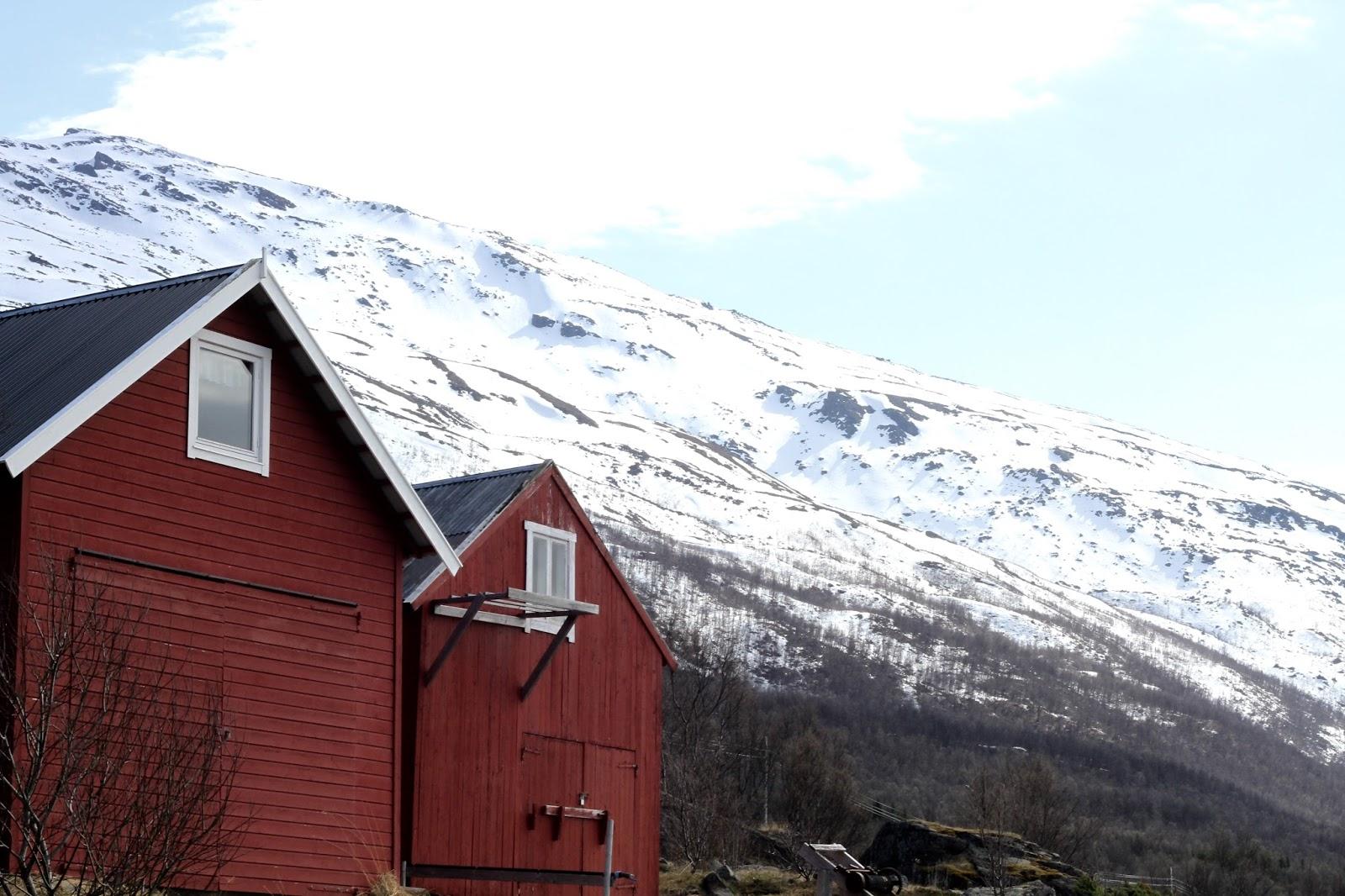 Pohjois Norjan Lohijoet