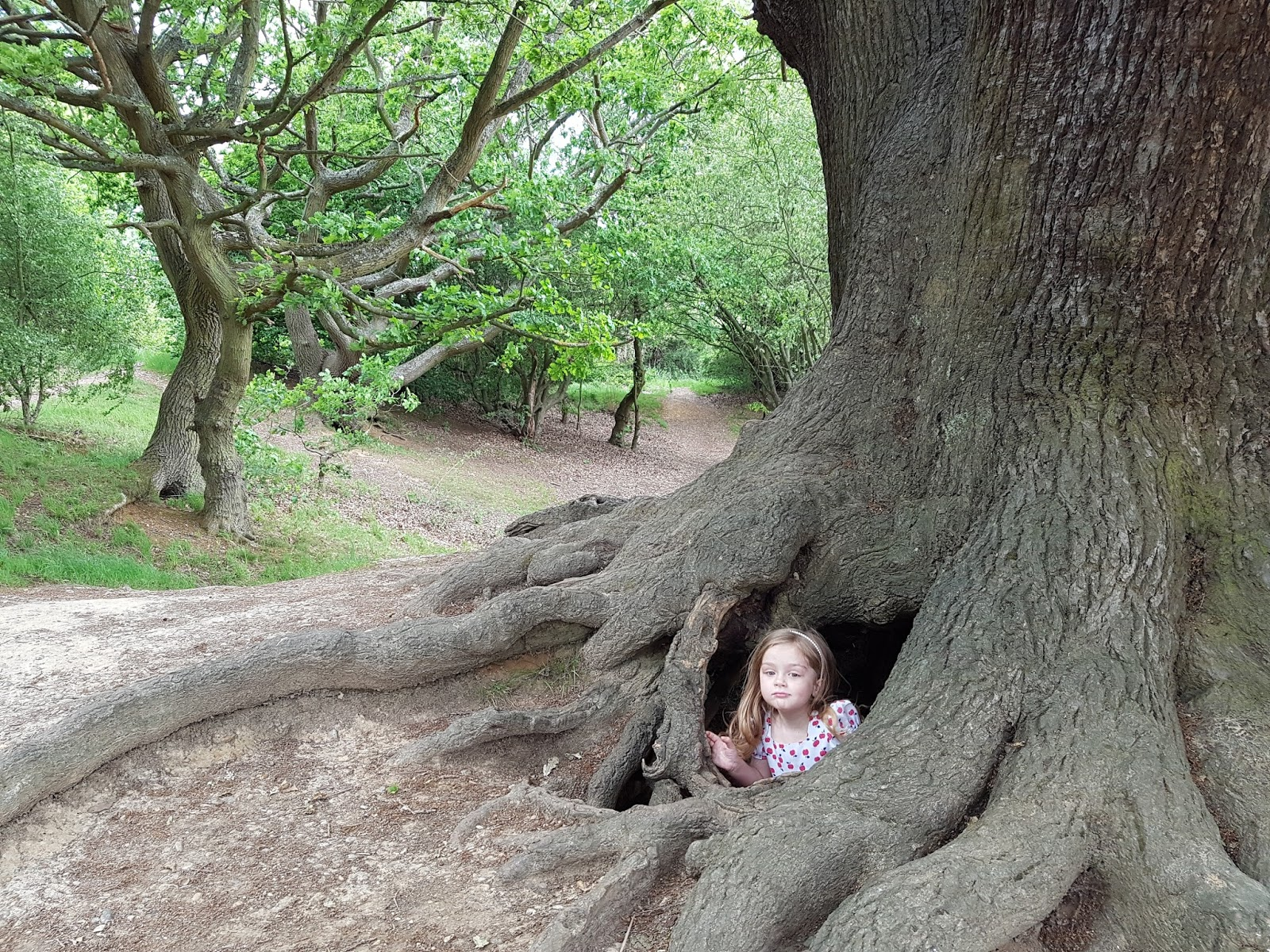 toddler in a cave under tree roots at epping forest