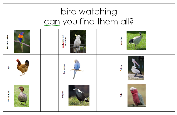 Printable Australian bird search #youclevermonkey