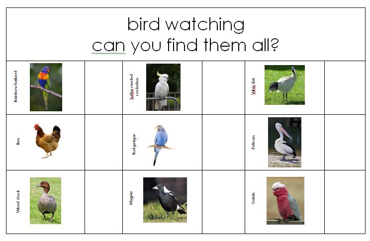 Printable Australian bird search #youclevermonkey