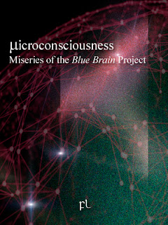Microconsciousness: Miseries of the Blue Brain Project Cover
