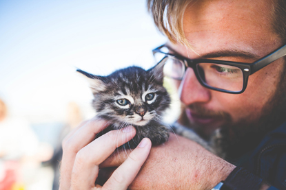 man with glasses holding tabby kitten