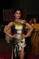 Shreya Saran in Skin Tight Golden Gown ~  Exclusive 035.JPG