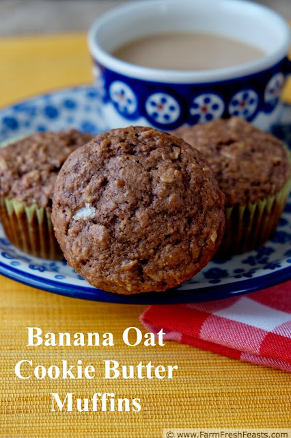 These whole grain banana oatmeal muffins are sweetened with cookie butter. Add cocoa powder if you'd like an even richer treat!