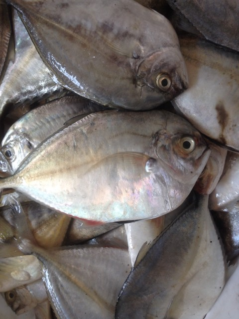 Ăn cá như thế nào để tốt cho sức khỏe?