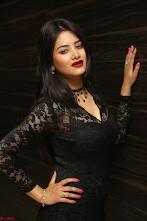 Actress Monica in spicy transparent Black Top at O Pilla Nee Valla Movie Audio Launch Feb 2017 069.JPG