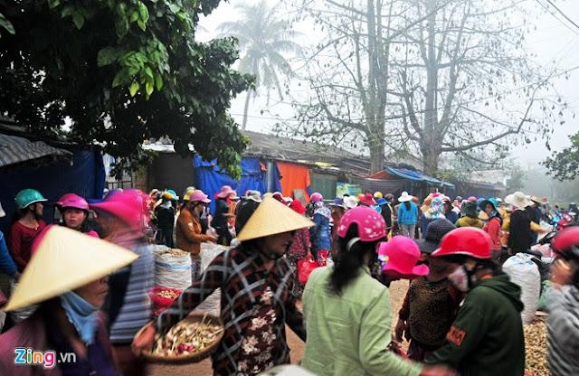 Chợ tỏi 4h sáng trên đảo Lý Sơn - Hình 12