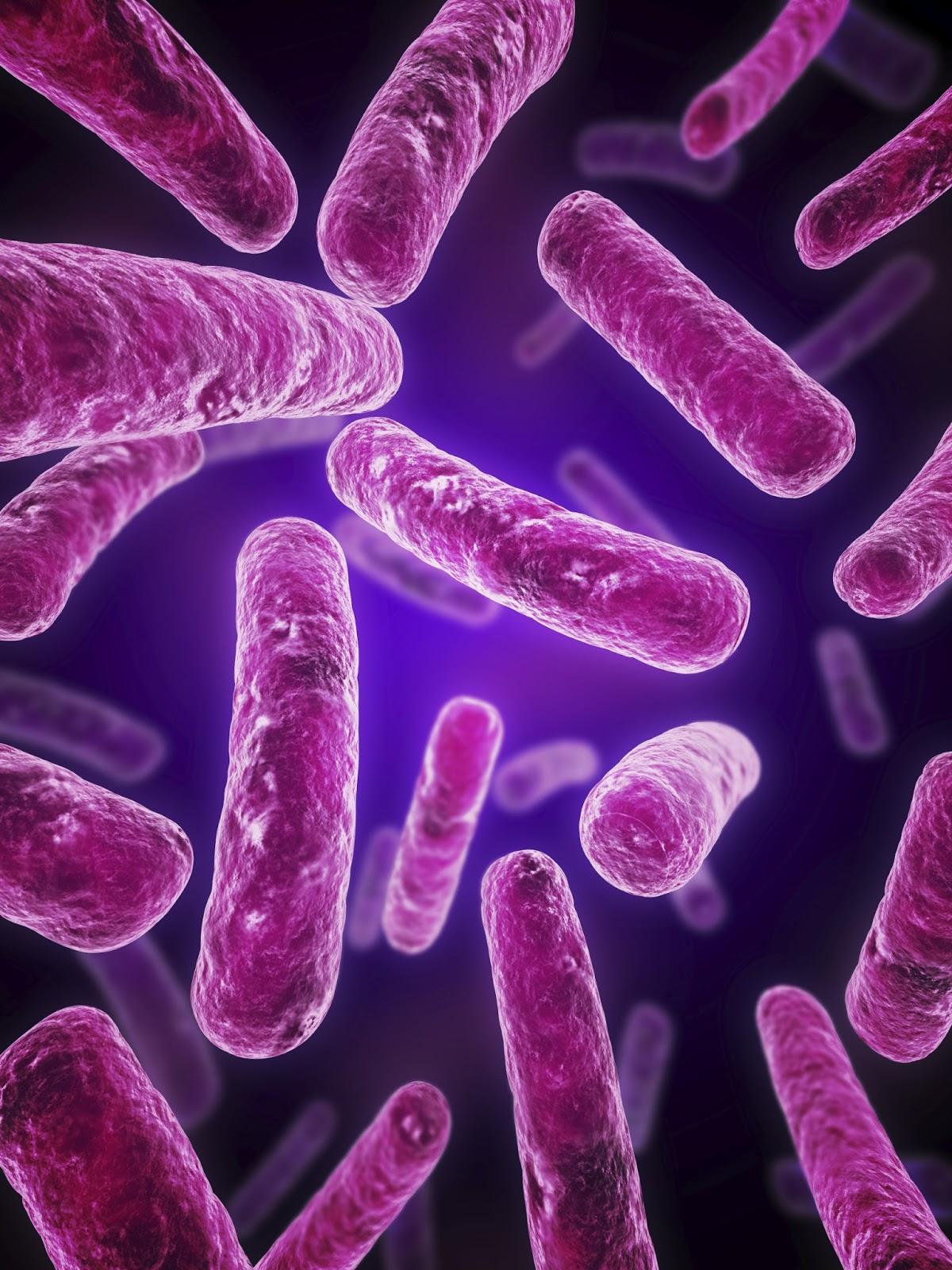 e coli in water - photo #43