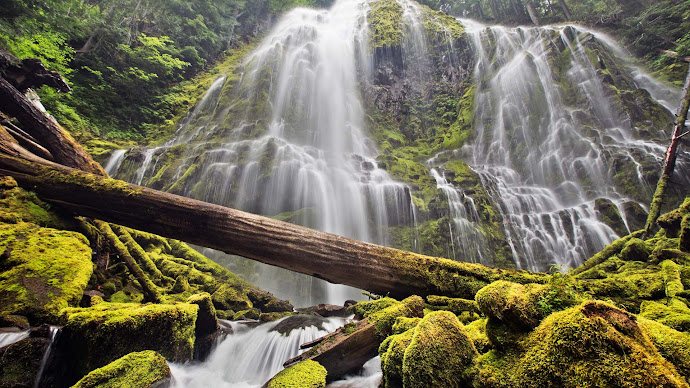 Wallpaper: Proxy Falls. The Magnificent Nature