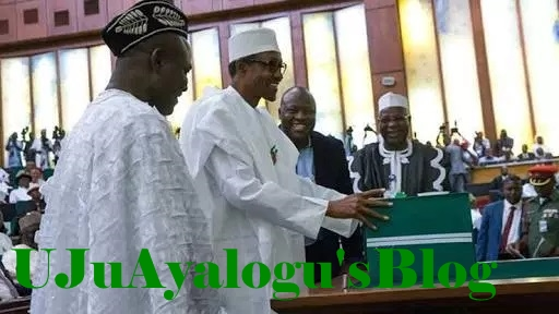 2018 budget proposal will accelerate devt., Lagos lawmakers say