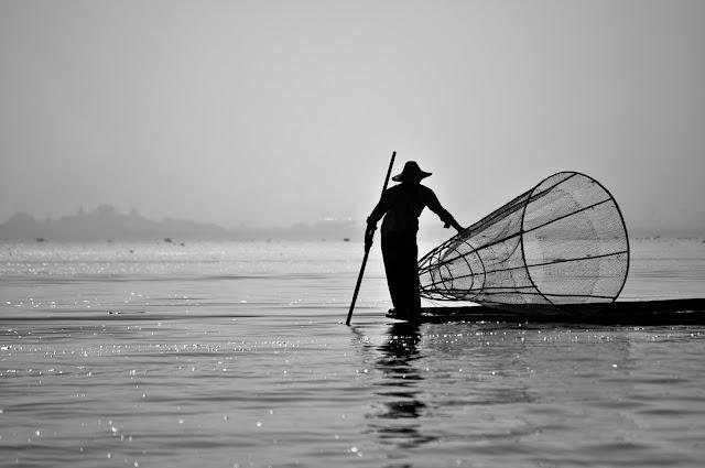 http://www.myanmar-aquafisheries.com/