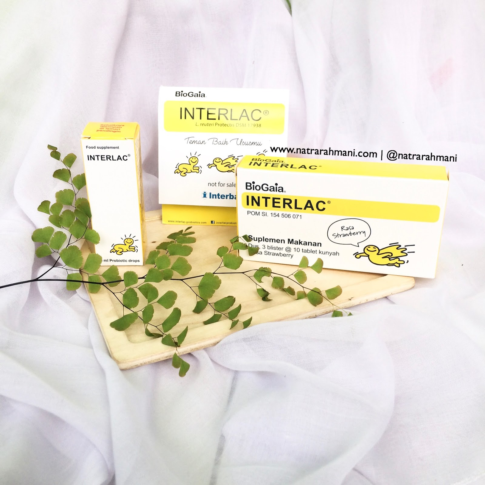 interlac-probiotics-untuk-kesehatan-cerna-si-buah-hati-natrarahmani