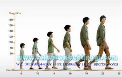 Peran Hormon HGH Untuk Pertumbuhan Tinggi Badan