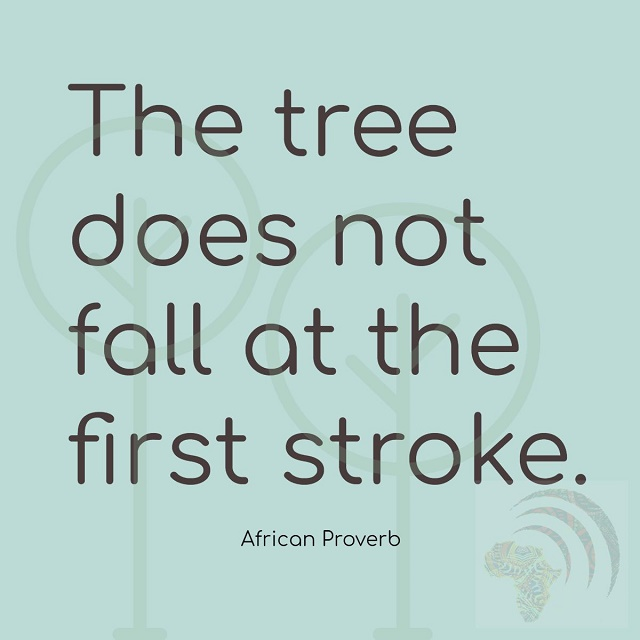 The tree does not fall at the first stroke. African Proverb