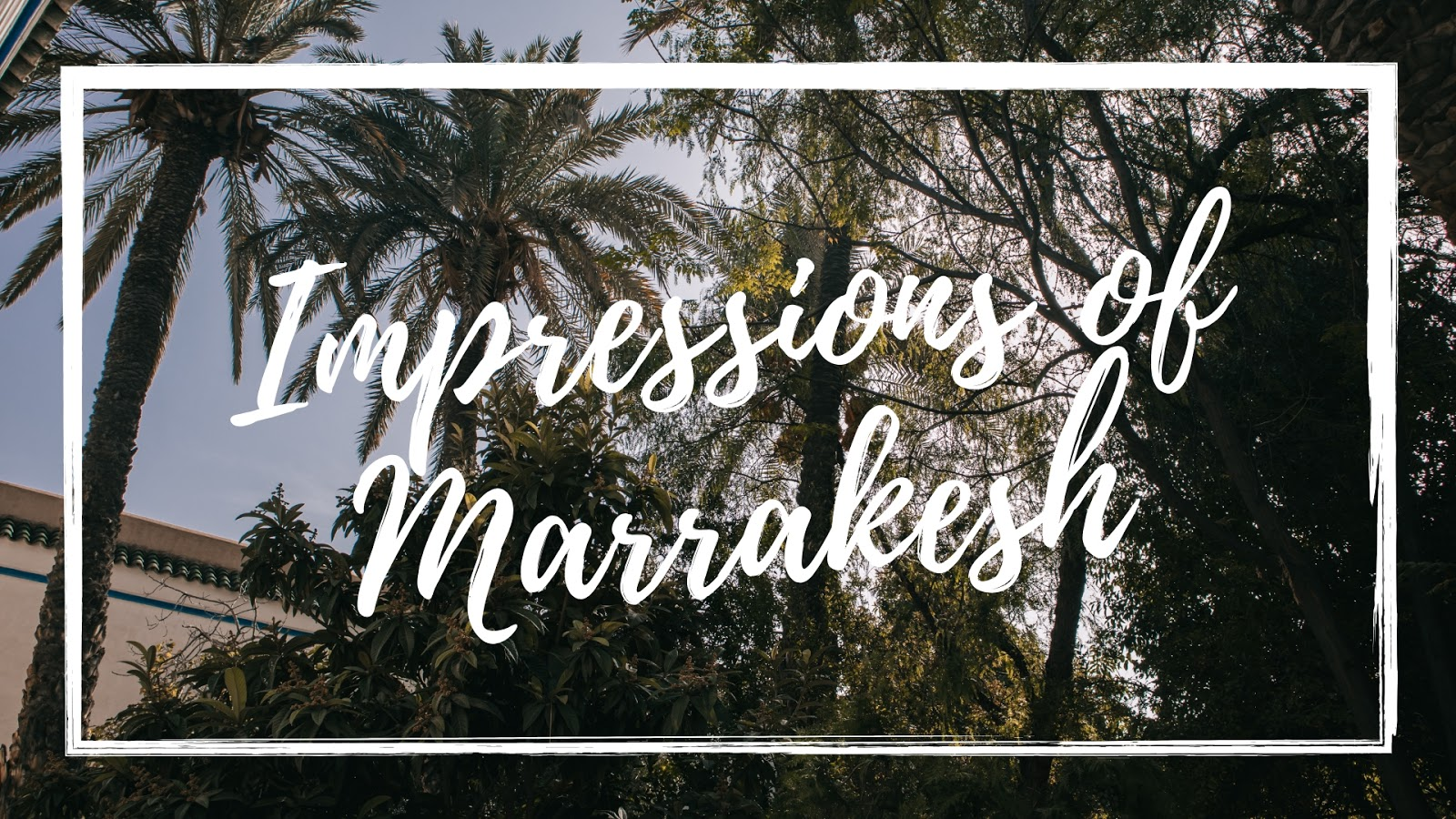 impressions of Marrakesh, Marrakech November 2018, Marrakesh November, Marrakesh travel, Suz and the Sun Travels, Suz & the Sun