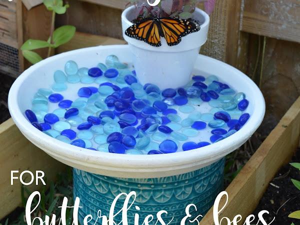 DIY Garden Puddling Station for Pollinators