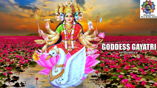 gayatri mata hd wallpapers, gayatri ma pictures in hd, gayatri devi