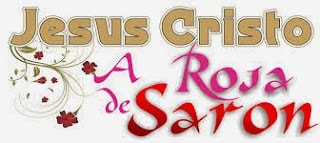 Significado Bíblico de Rosa de Saron