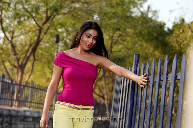 Shriya Saran pavithra movie stills