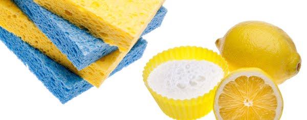 Cara Paling Mudah Membersihkan dan Menghilangkan Bau Membandel Di Plastik