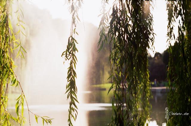 cytadela, park, fontanna, wierzby