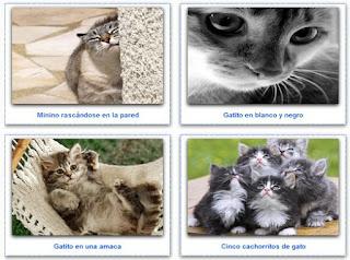 http://www.puzzlesonline.es/puzzle/tag/gatos/