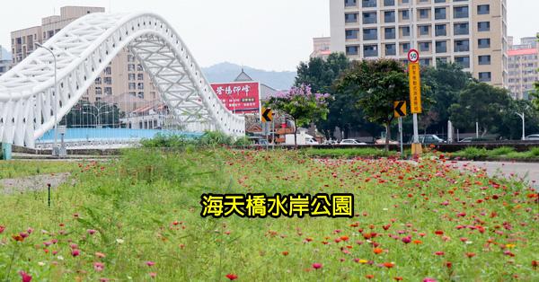 台中北屯|鉅虹建設海天橋水岸公園|百日草|落羽松|阿勃勒|美景盡收眼底