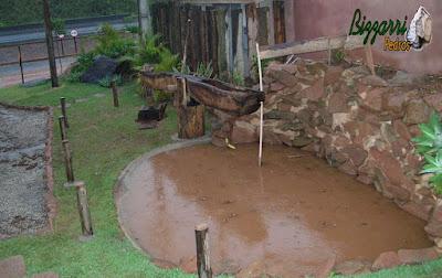 Monjolo de madeira já instalado e colocando a bica d'água de madeira Jacarandá e fazendo o término do muro de pedra no lago onde vamos deixar a bica de madeira na pedra para o monjolo funcionar.