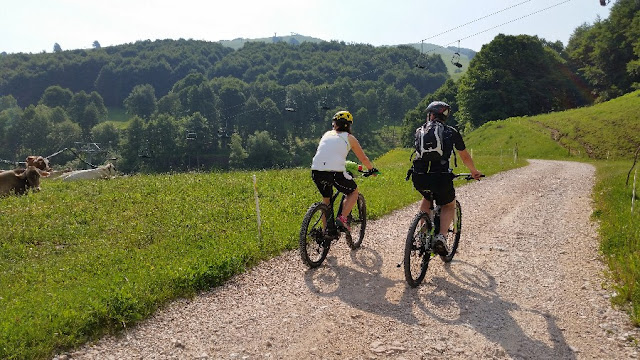 percorso mountain bike brentonico