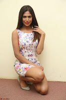 Nishi Ganda stunning cute in Flower Print short dress at Tick Tack Movie Press Meet March 2017 091.JPG