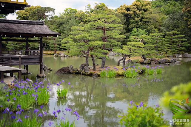 京都~金閣寺