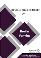 Project Report on Broiler Farming