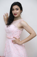 Sakshi Kakkar in beautiful light pink gown at Idem Deyyam music launch ~ Celebrities Exclusive Galleries 048.JPG