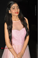 Actress Nidhisha Reddy Pos in Beautiful Pink Dress at Virus Telugu Movie Audio Launch .COM 0008.JPG
