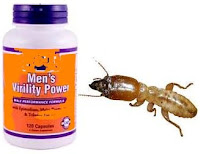 malaysia funny news about eating queen termite as aphrodisiac