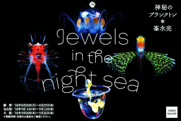 峯水 亮 写真展 Jewels in the night sea 神秘のプランクトン