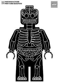 LEGO anatomical target