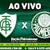Jogo América-MG x Palmeiras Ao Vivo