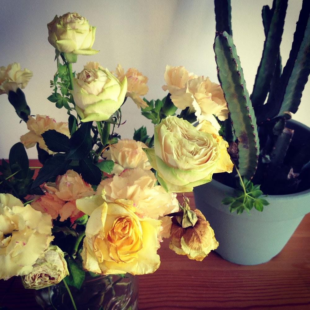 バラ、カーネーションとサボテン