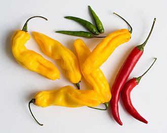 Peppers and Ginger work together to lower cancer risks