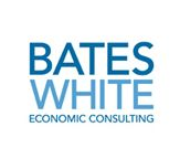 Bates White Summer Consultant Program and Jobs