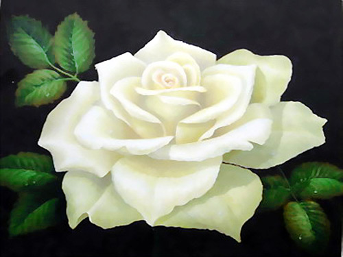 Crown Of Roses: A White Rose: For Priests