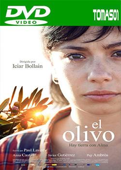 El olivo (2016) DVDRip