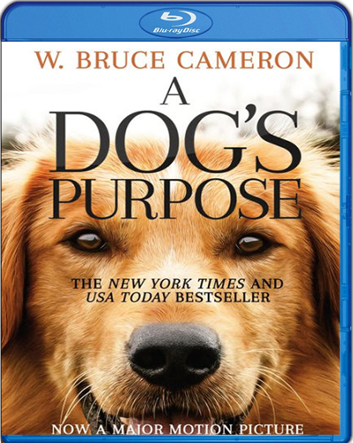 A Dog's Purpose [2017] [BD50] [Latino]