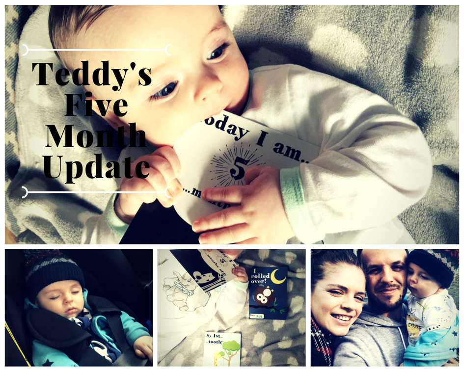 Teddy's 5 Month Baby Update