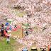 こどもと花見。ママたちの日常。金毘羅公園