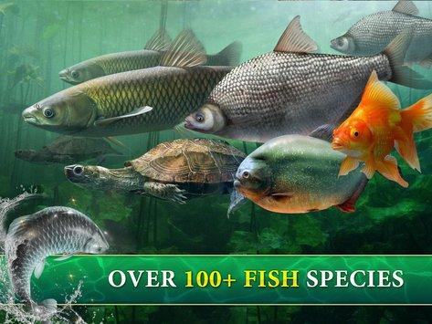 Big Fish King MOD APK terbaru