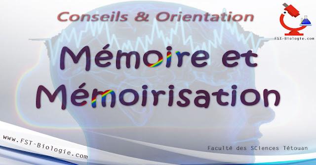 mémoire et mémorisation
