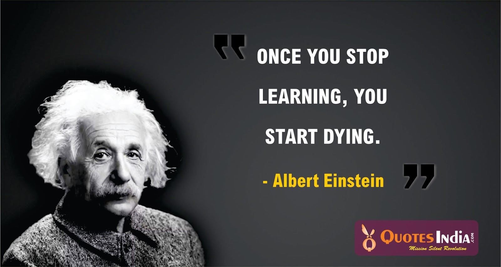Once You Stop Learning You Start Dying Albert Einstein Quotes