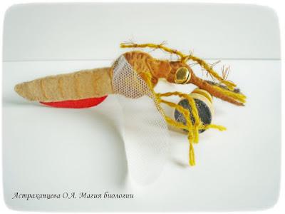 КОАПП_почему кусают насекомые_магия биологии, комар, фетр